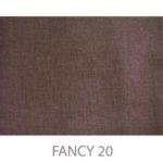FANCY20